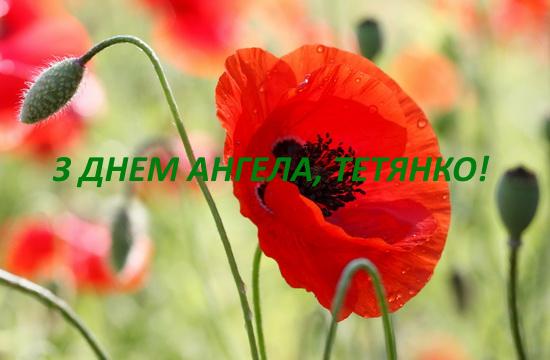 Тетянин день: красиві листівки і привітання з Днем ангела Тетяни у прозі