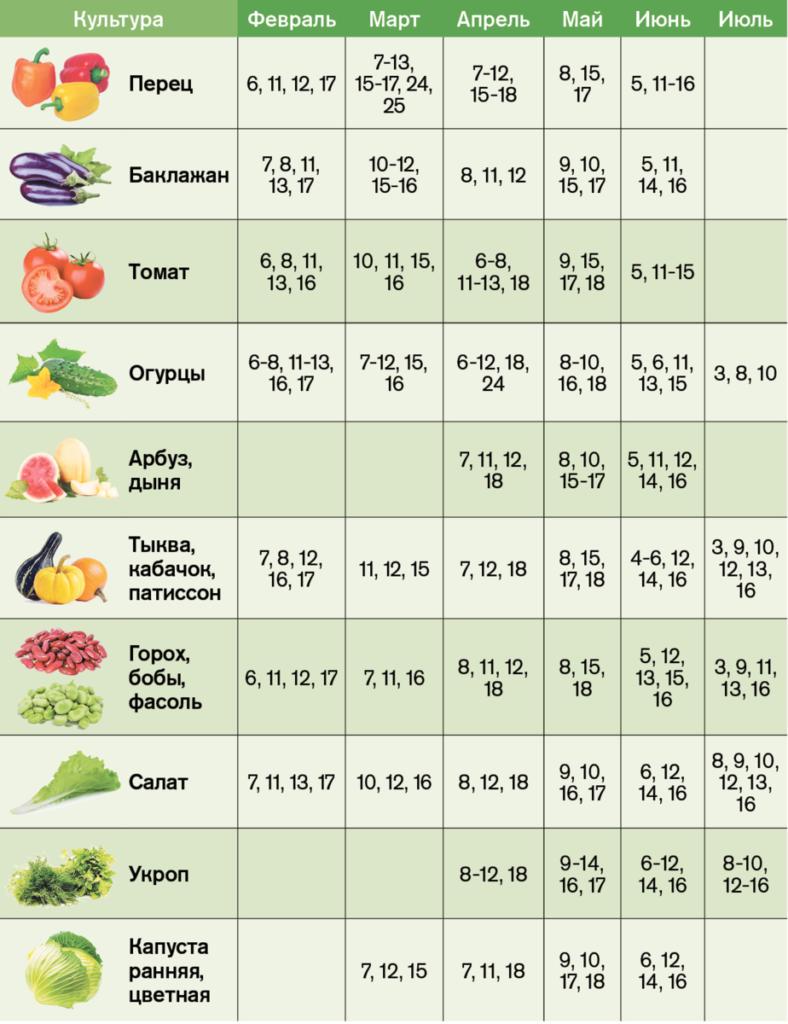 Посівний календар на травень 2021: що і коли саджати