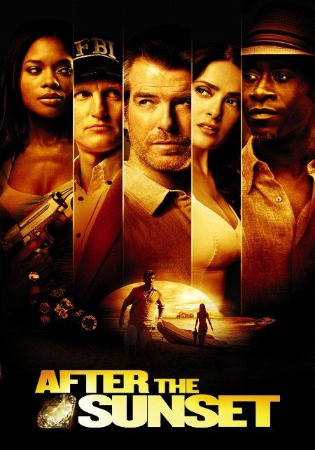 After the Sunset 2004 MULTi TRUEFRENCH 1080p Bluray REMUX AVC DTS HDMA 5 1-SWS