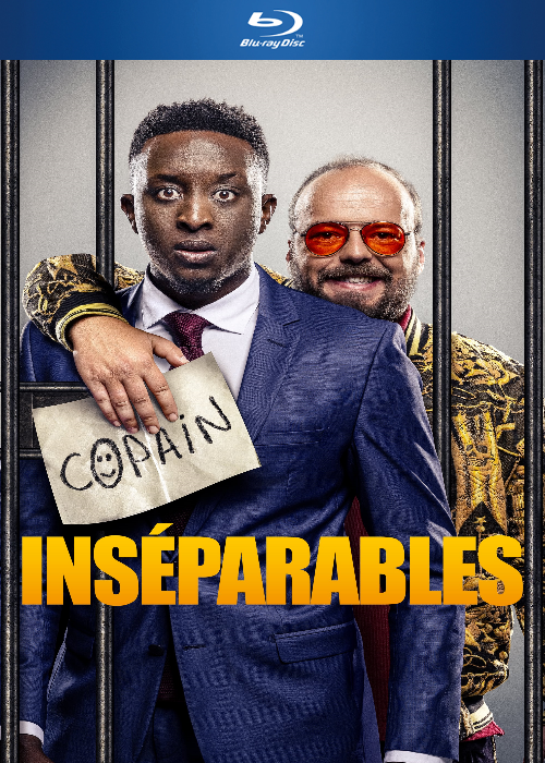 Inséparables 2019 VOF 1080p BluRay AC3 x265-Winks