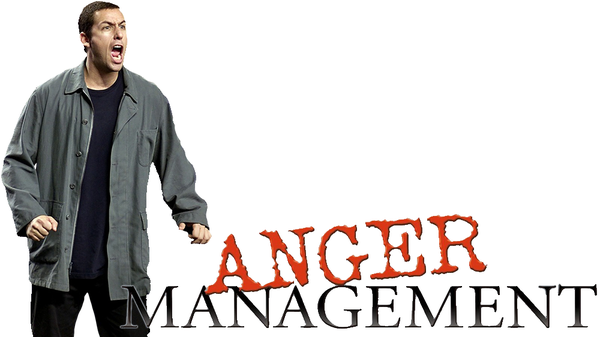 Anger Management 2003 MULTI 720p BluRay x264 AC3-LCDS (Méchant Malade)