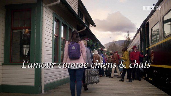 L'amour comme chiens et chats  2020 tf1 FRENCH TVRIPhd 720p MP4