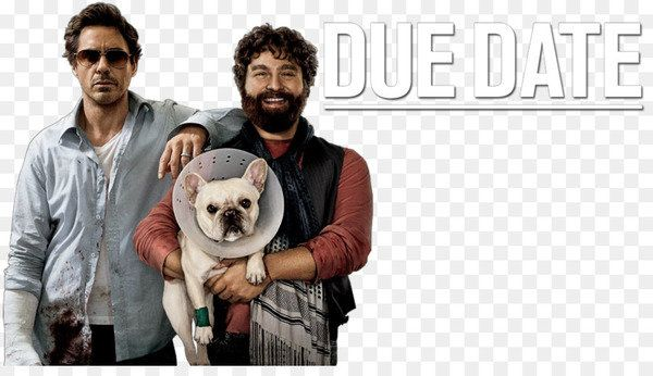 Due Date 2010 MULTI 1080p BluRay x264 AC3-LCDS