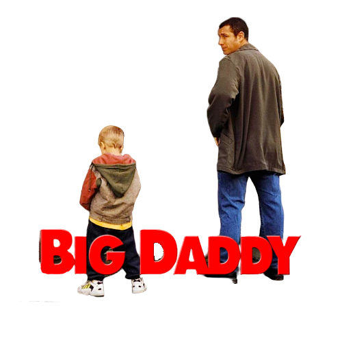 Big Daddy (1999) MULTi-VF2 [1080p] BluRay x264-PopHD (Drôle de père)