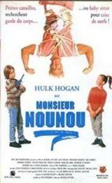 Monsieur Nounou 1993 Français Web-DL AVC-H264