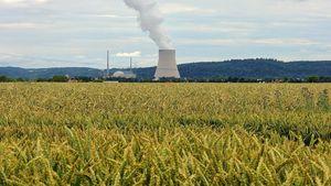 Chludziński: przewidujemy, że pierwsza elektrownia nuklearna zacznie pracować w 2029