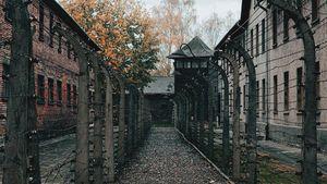 Gliński: Ważne jest, abyśmy podtrzymywali pamięć o nieludzkiej ziemi Auschwitz