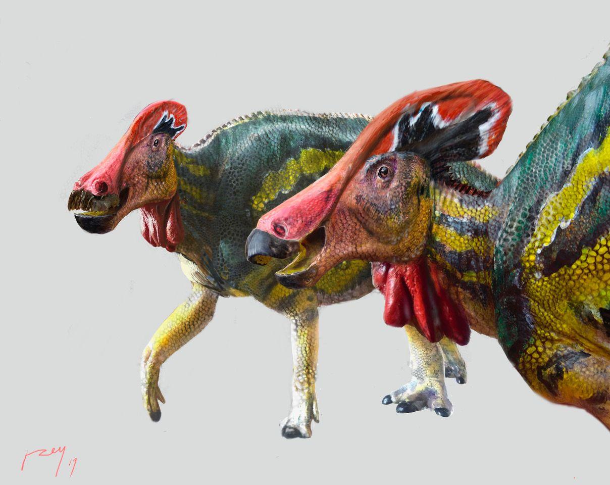 Рептилии жили на планете 70 миллионов лет назад