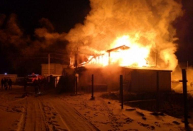 Десятки животных сгорели заживо в ХМАО