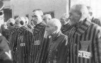 100-year-old alleged former Nazi guard to stand trial in Germany
