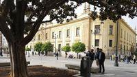 Un catálogo de árboles singulares velará por el patrimonio verde de Sevilla capital