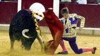 Cuatro corridas de toros sin canon, respuesta final de Zúñiga a la oferta de la Diputación de Zaragoza
