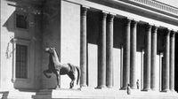 El gobierno alemán gana la batalla legal por la propiedad de los caballos de Hitler