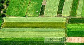 земля,рынок,дорога,озеро,река,поле,поля,лан,грунт,земельный,сельское,хозяйство,нива,с/х
