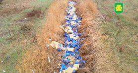У річку під Києвом викинули близько 300 каністр з невідомою маслянистою речовиною. ФОТОрепортаж