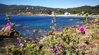Walk on the coastal path in La Seyne - La Verne beach in Mar Vivo