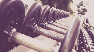 A.M.S.L.F Musculation Fitness