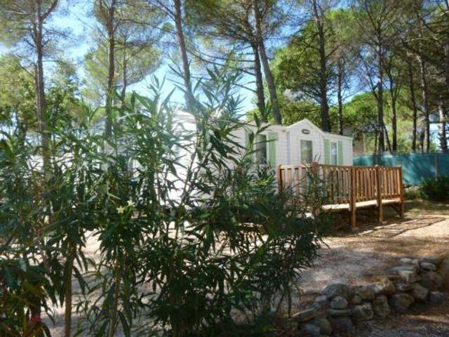 Camping le Provençal - Saint Maximin la Sainte Baume