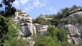Gorges du Caramy, côté Mazaugues