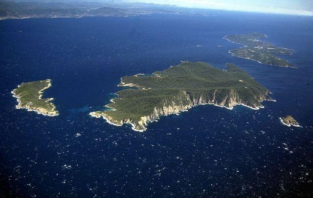 L'île de Bagaud - réserve intégrale - Dalles de Bagaud