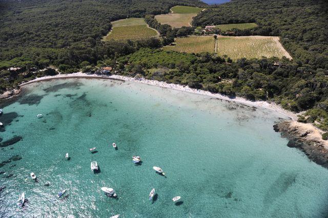 La plage d'argent - île de Porquerolles