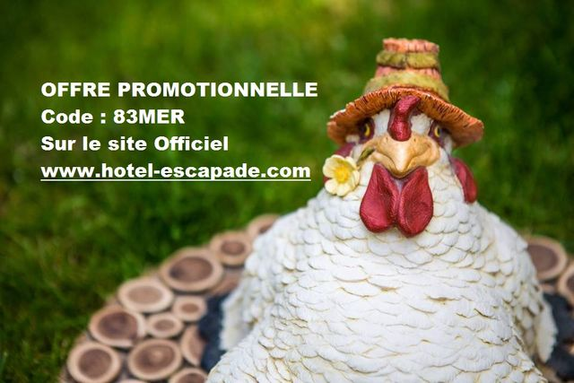 OFFRE PROMOTIONELLE !!!