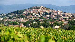 Association des vignerons de Cuers-Pierrefeu-Puget Ville
