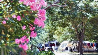 Camping de l'Argentière