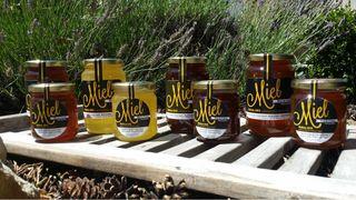 Abeilles et miel de la Sainte Baume