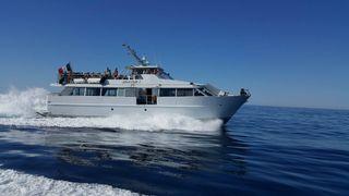 Balade en mer commentée des 7 calanques de Cassis avec l'Atlantide