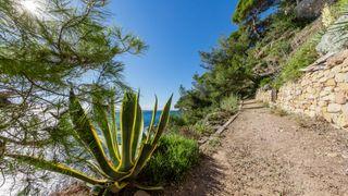 Hiking on the shoreline trail in Saint Mandrier