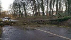 Des vents jusqu'à 100 Km/h de 6h à midi, les TER à l'arrêt, des arbres sur les routes…