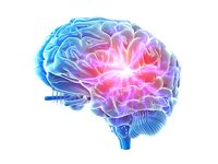 Novel small molecule potently attenuates neuroinflammation in brain and glial cells