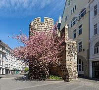 Wikimedia Commons picture of the day for September 17