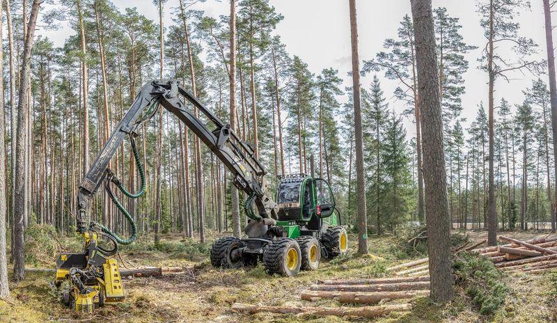 Eile alustati Lindora laadaplatsi metsaeraldisel raietöödega