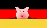 Cena niemieckich tuczników w końcu poszła w górę. Hodowcy czekali dwa miesiące