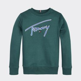 Tommy Jeans ESSENTIAL SIGNATURE SWEATSHIRT (9000039791_16053)
