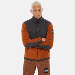 THE NORTH FACE M DENALI FLEECE (9000036597_41102)
