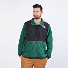 THE NORTH FACE DENALI JACKET 2 - EU (9000036710_41091)