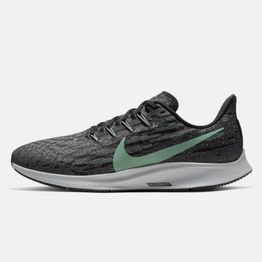 Nike Air Zoom Pegasus 36 (9000043372_42847)