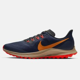 Nike AIR ZOOM PEGASUS 36 TRAIL (9000043465_42894)
