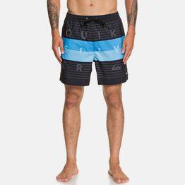 Quiksilver Word Block Men's Swim Shorts (9000050446_1469)