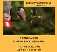 Bird Feeding - Garden Club