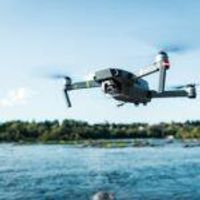 World Animal Day 2021: Drones Take Animal Research to New Heights