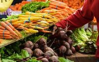 Press release - New EU farm to fork strategy to make our food healthier and more sustainable