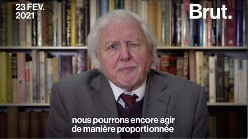 VIDEO. Le vibrant appel du naturaliste David Attenborough aux dirigeants du monde entier