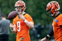 NFL Network's Adams: Joe Burrow leads AFC North in passing yardage, Bengals to playoffs