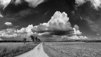Cloud-Monitor 2021: Inzwischen sind (fast) alle Unternehmen in der Cloud