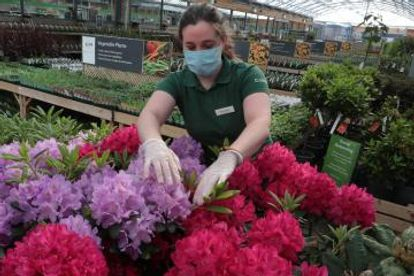 scottish, dobbies, garden, centres, business, resilience, pandemic