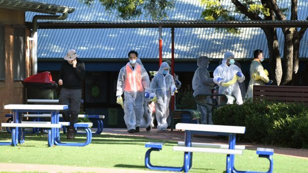 Cleaners in personal protective equipment work at Strathfield South Public School in Sydney. The school was closed by authorities after an unidentified person tested positive for Covid-19. Photograph: Joel Carrett/EPA